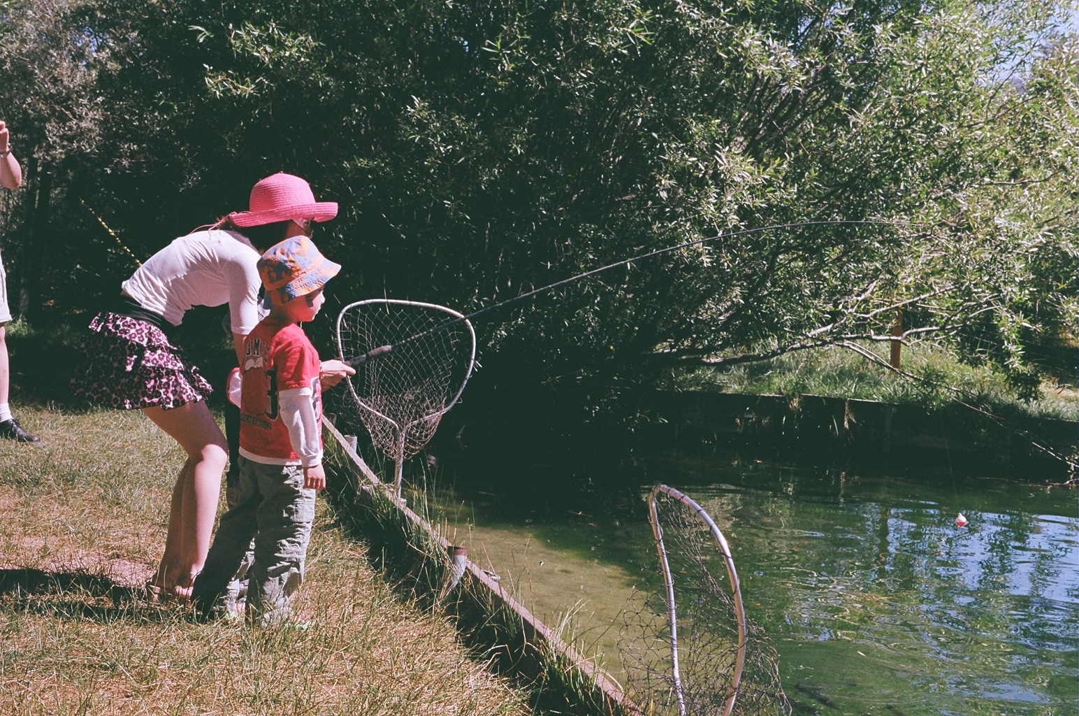 Tahoe trout farm come where you really hook em - Trout farming business family mountains ...